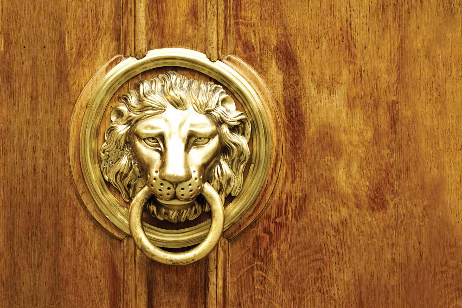 Door Knocker decorated as a lion